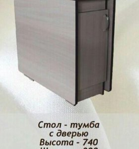 Стол-тумба с дверью.