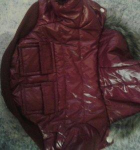 Куртка для животных с искусственным мехом.