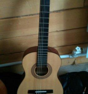Гитара HC-02