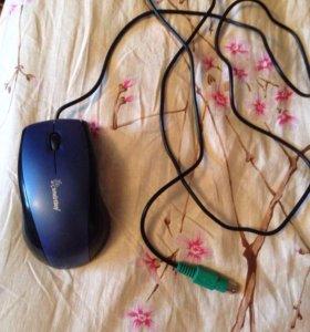 Продаю Мышку