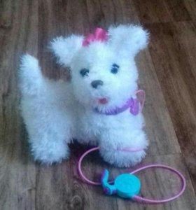 Интерактивный щенок Гого