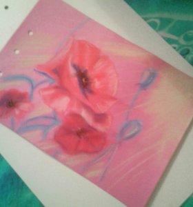 Картина из серии цветы (пастель)