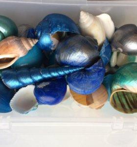 Ракушки и декоративные камни для рукоделия