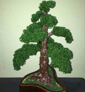 Декоративные деревья. Подарок