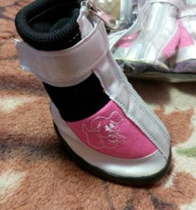 Обувь для вашего любимца