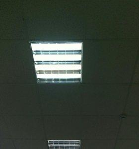 Лампы светодиодные T8/G13