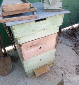 Улик для пчел