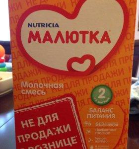 Смесь Малютка-2