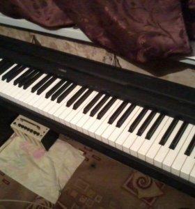 Пианино Yamaha P-35