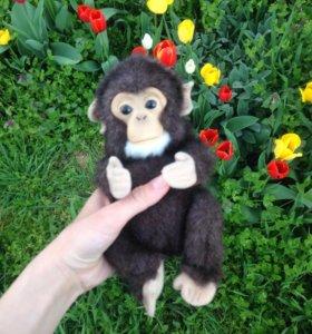 Говорящая обезьянка