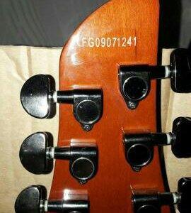 Гитара Fernandes dragonfly pro
