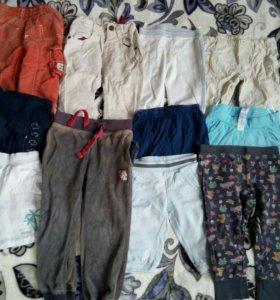 Штаны и шорты 11шт