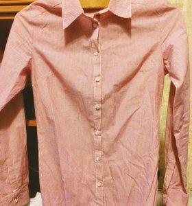 Рубашка боди новая s