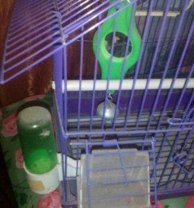 Клетка для попугайчиков.