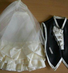 Для свадьбы новые + новая фата в подарок!!!