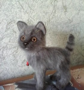 Кошечка-Дуся
