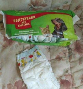 Подгузники для собак и кошек