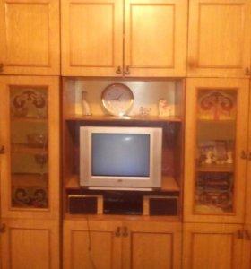 Стенка,телевизор,ручной блендер,микроволновка