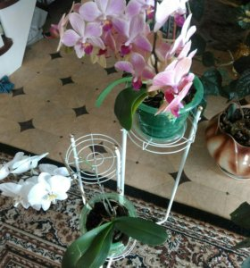 Подставка под цветы(новая)