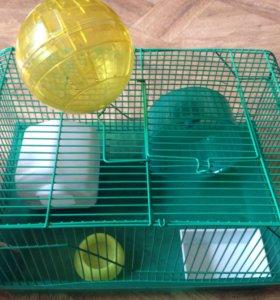 Клетки для грызунов.