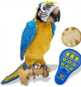 Интерактивный попугай