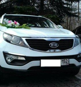 Авто на свадьбу с водителем