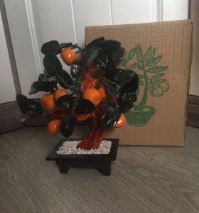 Мандариновое дерево новое