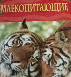 Детская энциклопедия Млекопитающие