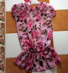 Блузка Итальянского бренда