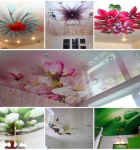 🌺 цветы на потолке