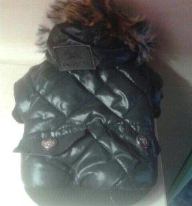 Курточка для собак новая