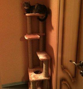 Домик для кошки 93