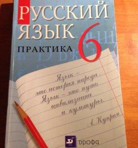 Русский язык практика 6 класс