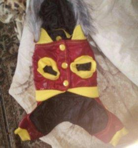 Курточка для маленькой собачки/кошки