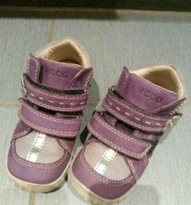 Ботинки ECCO 24
