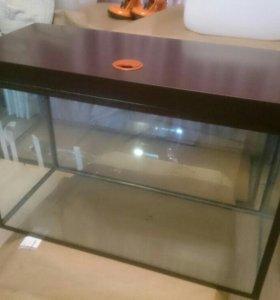 Новый аквариум. 130 литров.