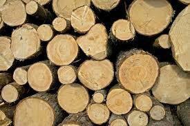 Дуб, граб, дрова