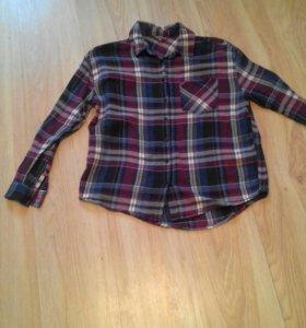 Рубашка, пиджак Teranova