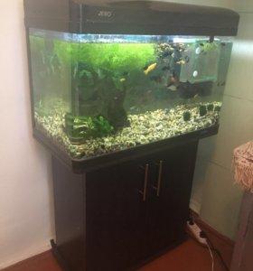 Продаётся аквариум Jebo