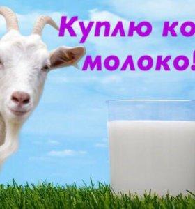 Куплю козье молоко в большом количестве для ребенк