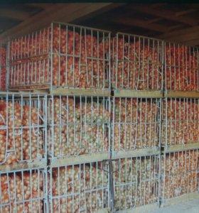 складские помощения(овощехранилище) 4000 кв.м