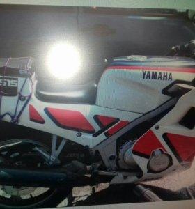 Ямаха фзр 250 Yamaha fzr 250