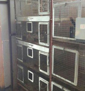 Профисиональные клетки для кроликов