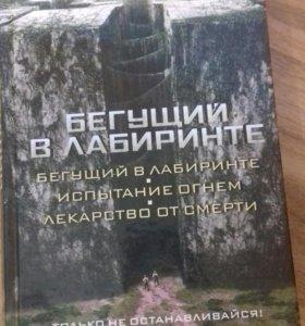 Книга: Бегущий в лаберинте