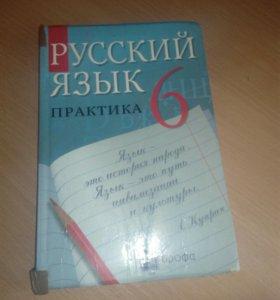 Русский язык практика 6 класс ДРОФА