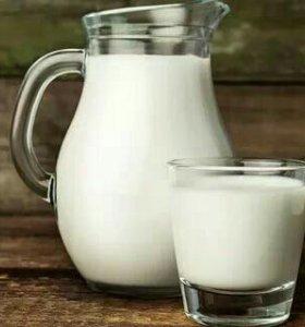 Сметана, молоко, творог, сыр. Всё домашнее!