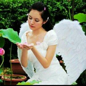 Крылья касплей