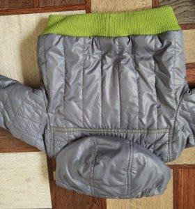 Детская куртка демисезон.
