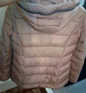 Куртка. Осень