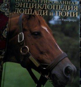 "Подарочная книга ""Лошади"""